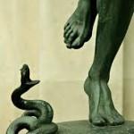 snake-heel